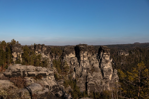 Wide angle shot of bastei bridge in germany covered with trees under a clear blue sky