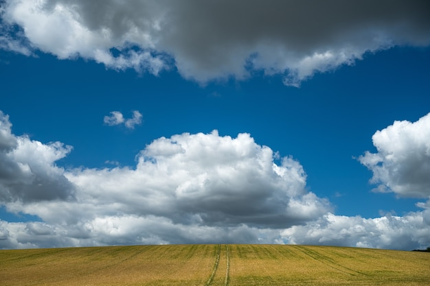 Wide angle shot of the field under the sky full of clouds