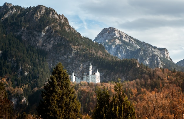 Wide angle shot of the neuschwanstein castle in germany behind a mountain surrounded by the forest