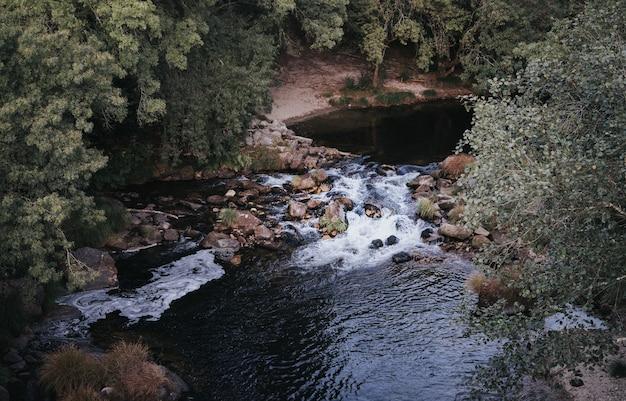 나무로 둘러싸인 흐르는 물의 와이드 앵글 샷