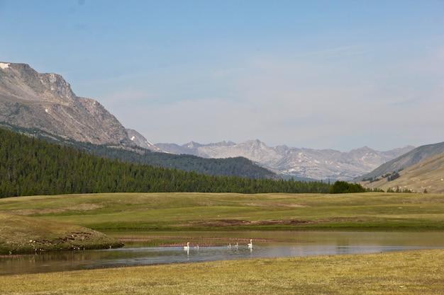 大きな風景の前の山の広角ショット