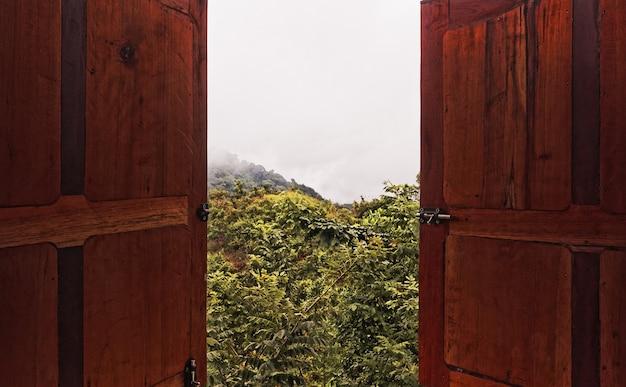 建物から見た木々と自然の広角ショット