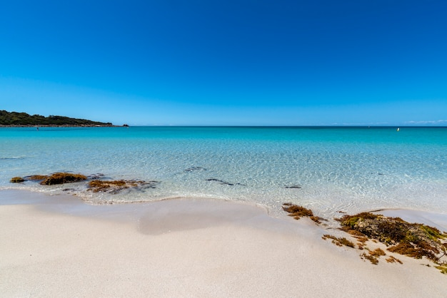 Wide angle shot of some rocks on the green bay beach in western australia under a blue sky