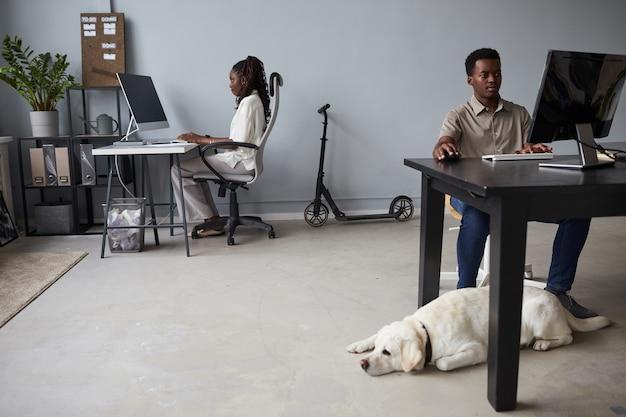 책상 옆 바닥에 개가 누워 있는 현대적인 애완동물 친화적인 사무실의 광각 전망, 복사 공간