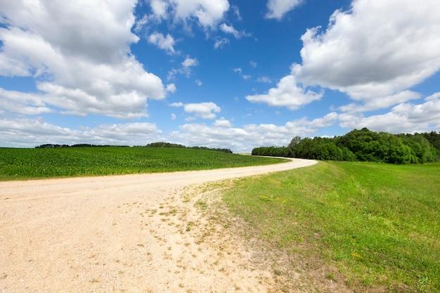 넓은 시골 길, 언덕으로 올라가는 모래에서 아스팔트가없는 여름 풍경