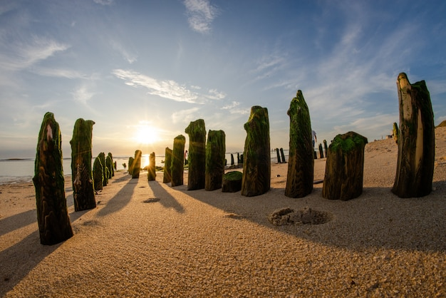 Wide fisheye shot of vertical stones covered in green moss at a sandy beach on a sunny day