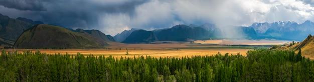 Широкий панорамный пейзаж с опушкой хвойного леса и гор в легком тумане. атмосферный драматический осенний горный пейзаж. курайская степь. горный алтай.