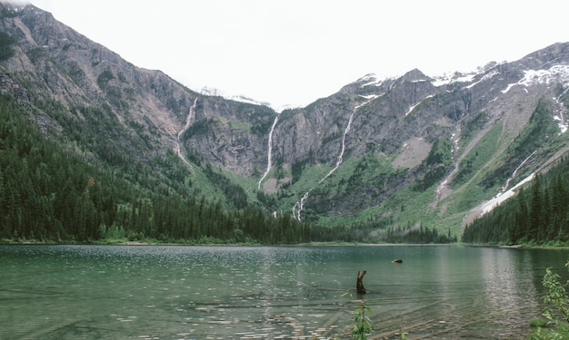 Wide shot of the avalanche lake near a forest and a mountain in the distance