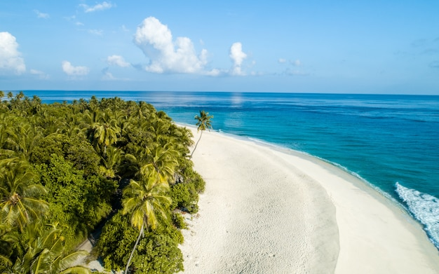 Wide shot of the beach and trees on the maldives island