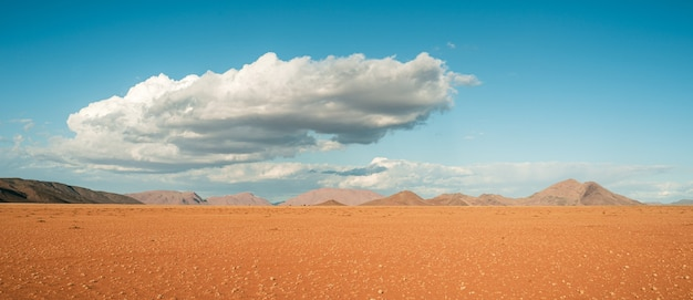 Campo ampio di una splendida vista del deserto del namib in africa