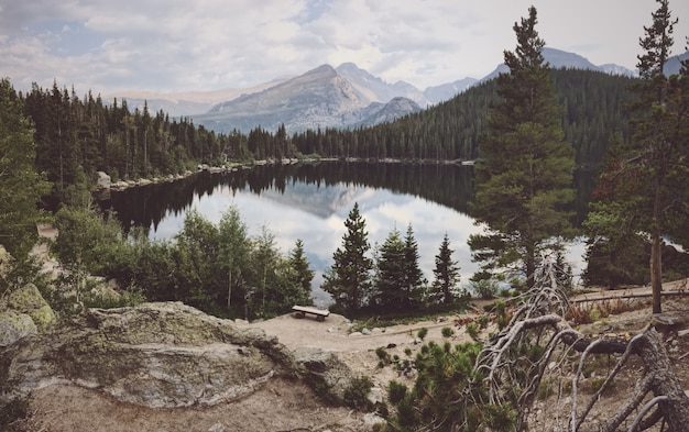 Wide shot of a  big pond surrounded by trees with a mountain in the background
