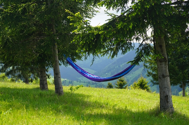Wide shot of a blue hammock tied to two trees on a hill with a beautiful view of nature