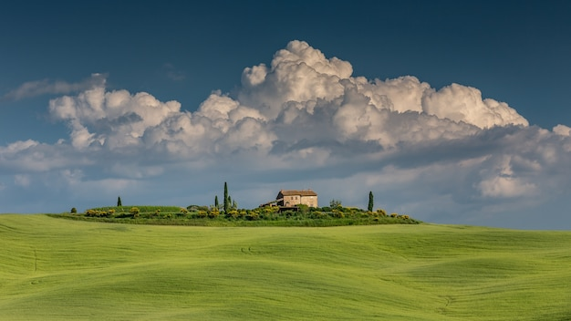 Wide shot of a green hill in val d'orcia tuscany italy