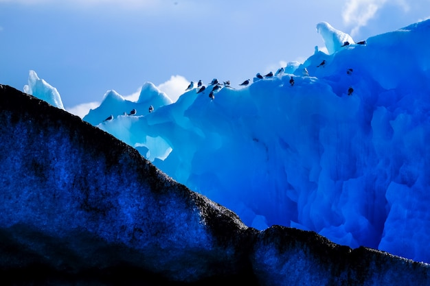 Wide shot of a group of penguins on a tall iceberg