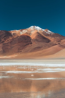 Ripresa a tutto campo di una montagna e uno specchio d'acqua nel deserto in una giornata di sole