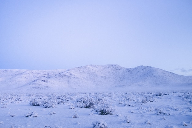 Wide shot of a mountain covered in snow