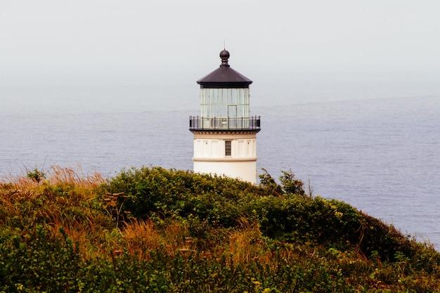 Широкий снимок белого маяка на скале, покрытой зеленой и оранжевой травой у водоема