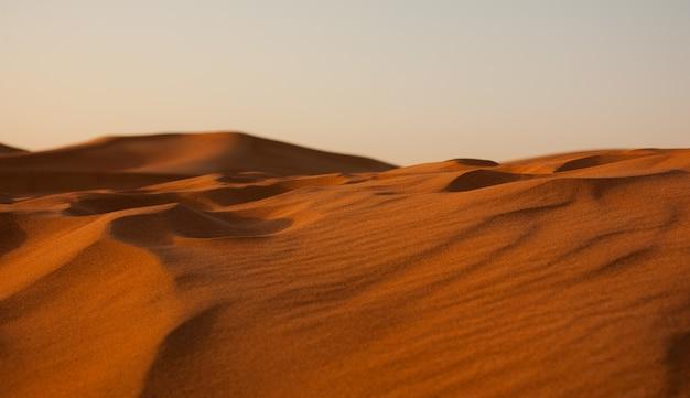 砂浜のエルグ砂漠のワイドショット