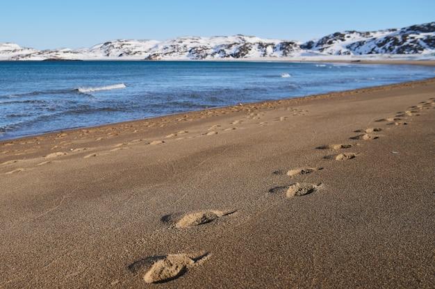 모래에 여전히 눈이 겨울 동안 석양 해변의 와이드 샷