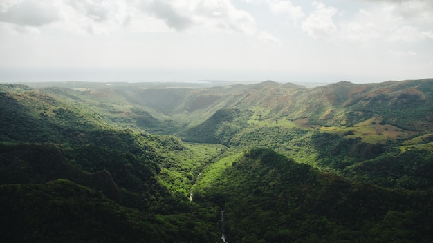 Wide shot of river going through the forest and the mountains captured in kauai, hawaii