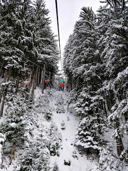 Grandangolo di impianti di risalita circondati da alberi di pino