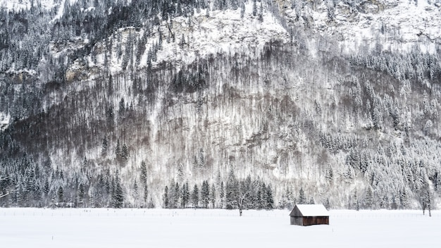 Wide shot of a small wooden cabin on a snowy surface near mountains and trees covered in snow
