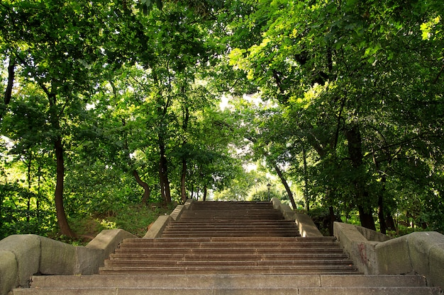 Wide stairs going up in mariinsky park, kiev