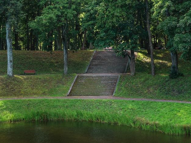 緑豊かな公園の水への広い石の階段。サマービュー。ガッチナ。ロシア。