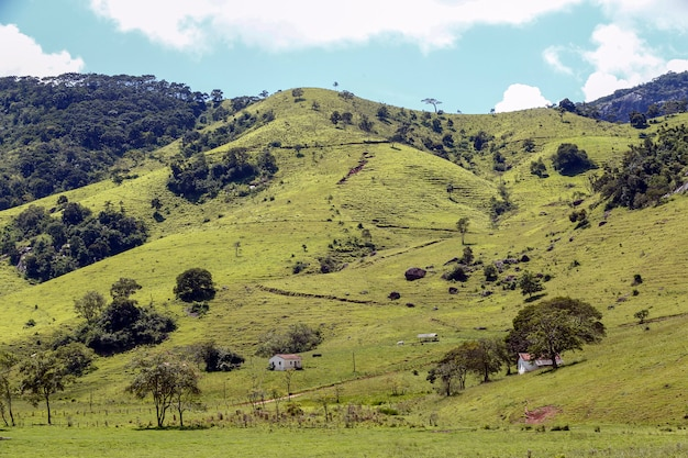 ブラジル、ミナスジェライス州のマンティケイラ山脈の緑の丘の広い景色 Premium写真