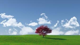 Widescreen tree landscape