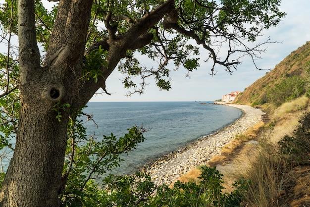 Дикий пляж на берегу черного моря. южный берег крыма.