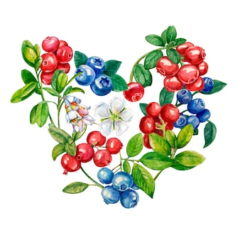 Wild berries in the shape of a heart on a white background