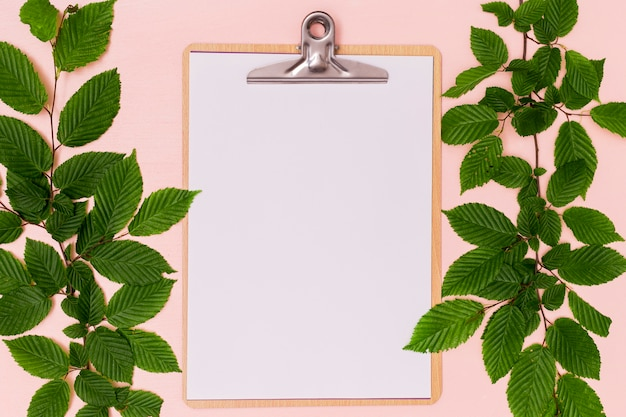 Wild cherry leaves with clipboard copy space