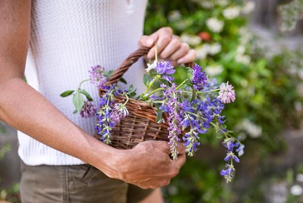 自然療法と植物学のためのバスケットの野生の花