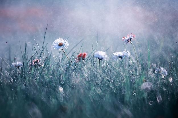 緑の牧草地に野生の花の小さな花