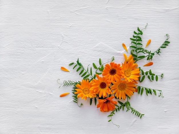 흰색 나무 배경에 카모마일과 금송화의 야생 꽃 꽃꽂이