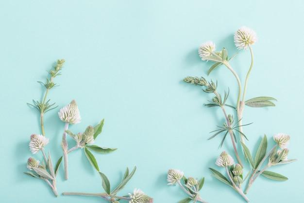 緑の紙の表面に野生の花