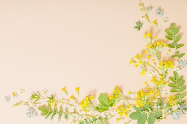 종이 배경에 야생 꽃