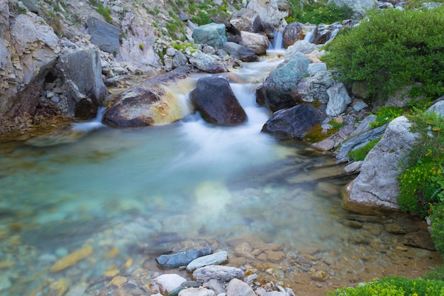 Wild flowing wers in the alps, long exposure, close up