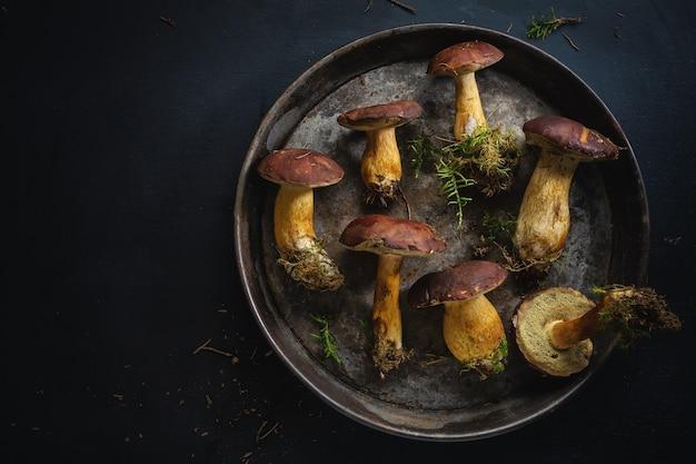 어둠 속에서 요리를위한 준비 숲에서 야생 버섯. 위에서 봅니다.
