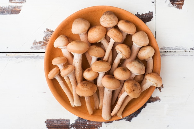 Wild mushrooms raw honey agaric on a plate on a wooden table.