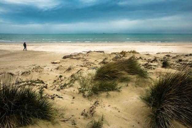 Wild sandy dunes beach