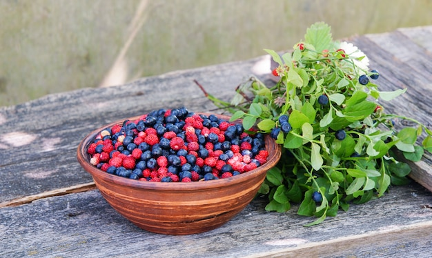 Wild strawberry and blueberries in a red bowl