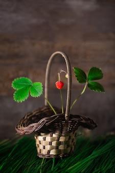 ハーブの木製の壁のバスケットの野生のイチゴ高品質の写真