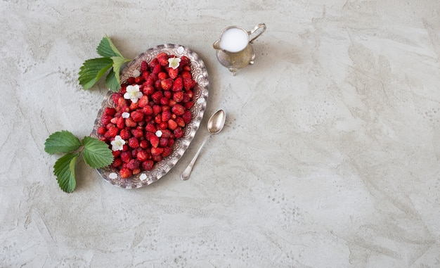 Wild strawberry in a silver old plate, creamer with milk and a silver spoon on a gray table