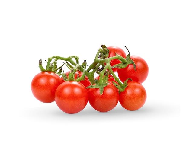 Wild tomato isolate on white background