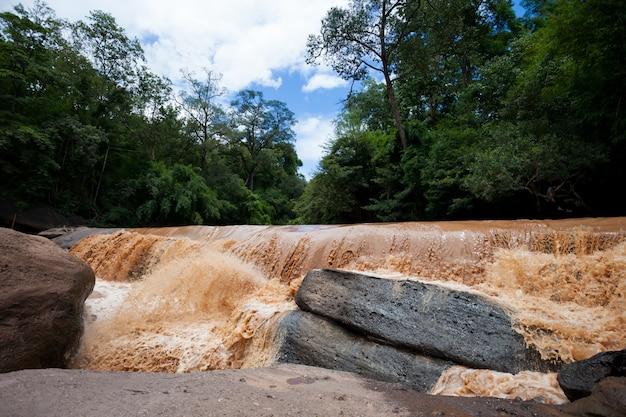 流れる野生の水。自然災害。鉄砲水。