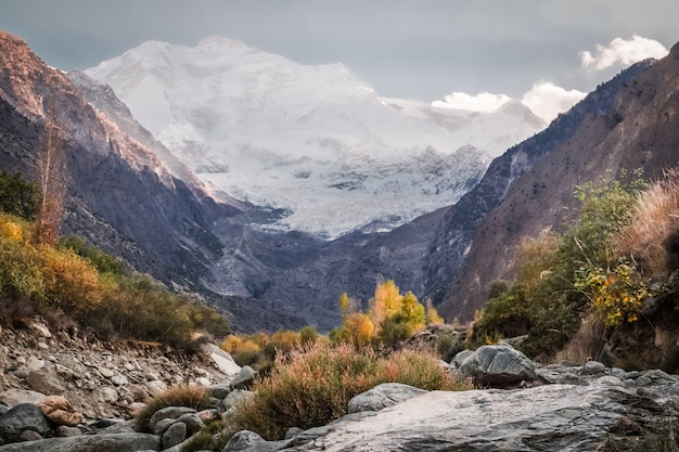 Wilderness area with snow capped rakaposhi mountain.