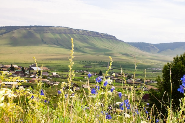Wildflowers against the backdrop of mountain ranges and low-lying villages. panoramic photo.