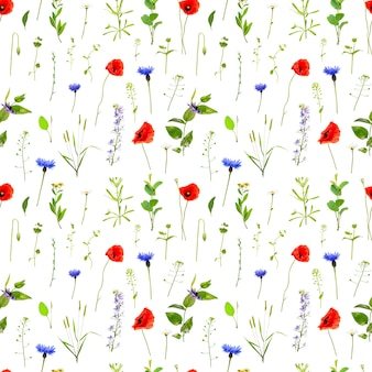 Полевые цветы бесшовные модели. природа фон
